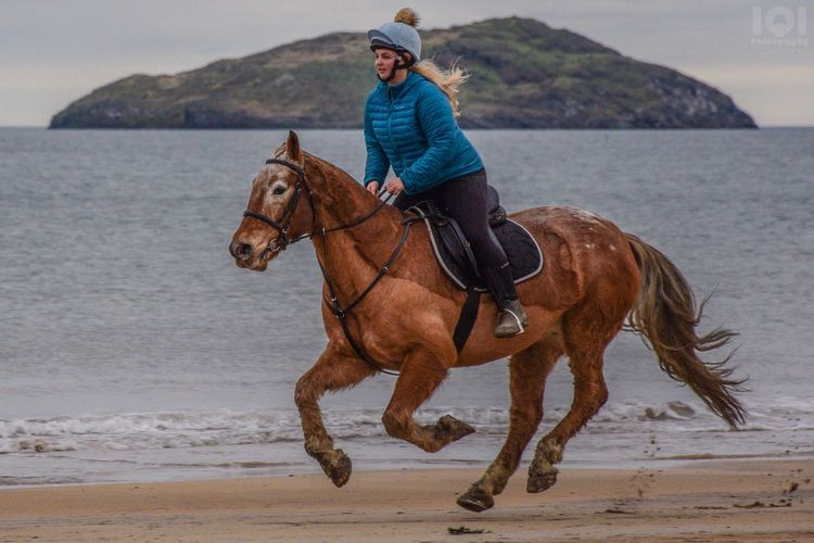 Outdoors Ride Horses Horse Riding Horse Photography  Horse Beach Sea Freeze Shots Flying Flyinghorse Sand Sand & Sea