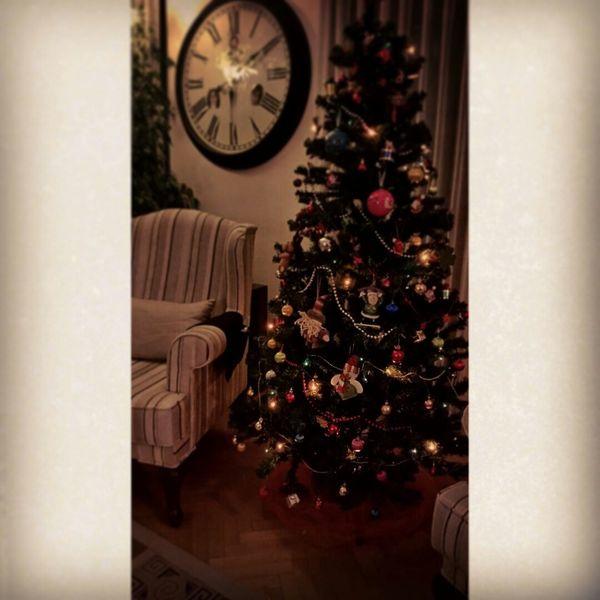 Mary Christmas Noel2015 NewYear ?