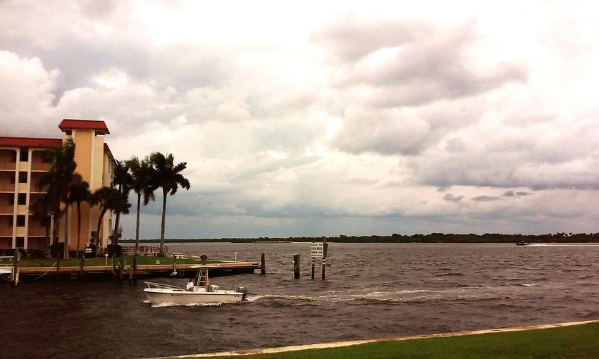 Stormy Weather Storm Brewing Storms Cloud - Sky Nature Outdoors Florida! Palm Trees Road Views