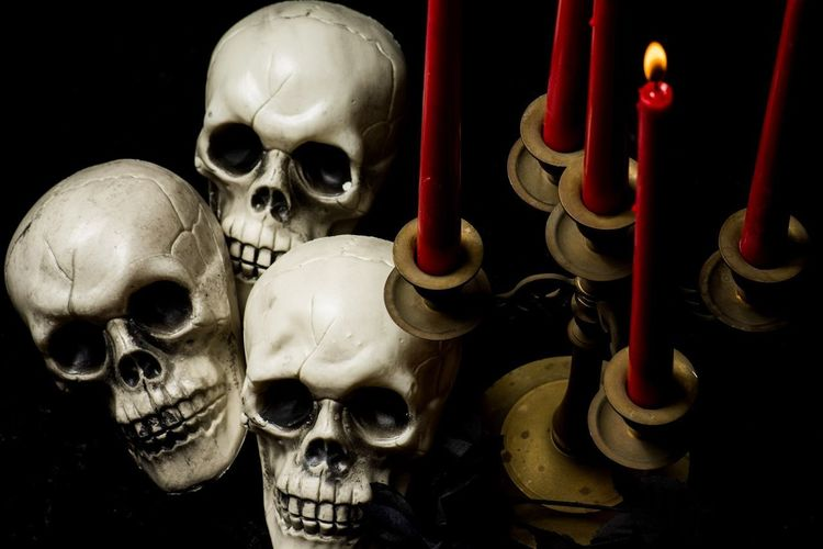 Human Skull Human Bone Spooky Arts Culture And Entertainment Human Skeleton Close-up Skull Halloween Skeleton