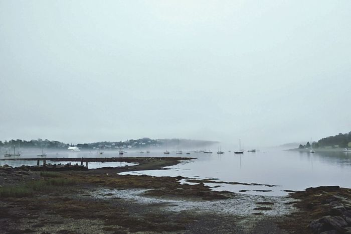 Water Calm Bay Fog Over Water Lunenburg, NS, Canada Morning Quiet Tranquility