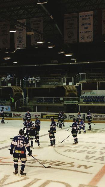 Hockey Night Icehockey