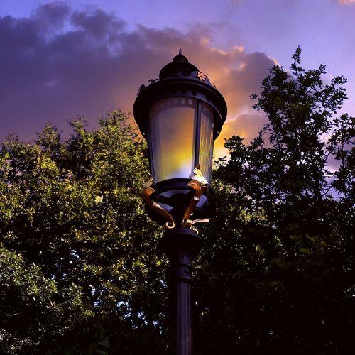 Lantern Light And Shadow Creative Light And Shadow Fairytale  Fantasy Art Sunset Light Eye4photography  EyeEm Best Edits