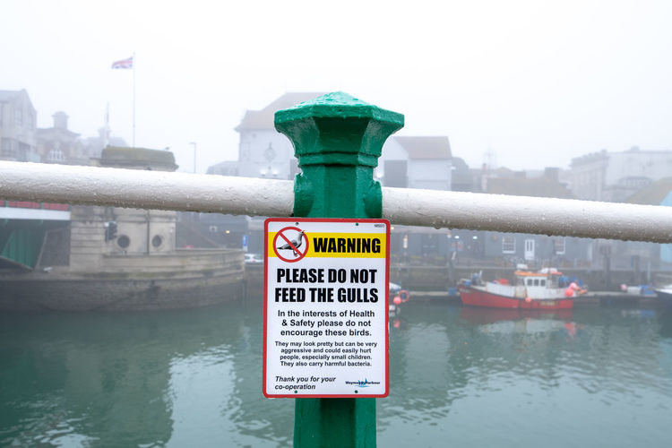 """A polite warning sign asking you """"Please do not feed the gulls"""" attached to a green hand rail post in the foggy town of Weymouth, Dorset, UK. Dorest England Jurrasic Coast Weymoth Coastal Town Do Not Docked Feed  Feeding  Fishing Boat Foggy Foggy Weather Gulls Hand Rail Low Cloud Misty Morned Polite Polite Notice Request Seagulls Sign South Coast Warning Water Communication No People Day Nature Architecture Built Structure Focus On Foreground Text Close-up Outdoors Safety Building Exterior Western Script River Guidance City Security"""
