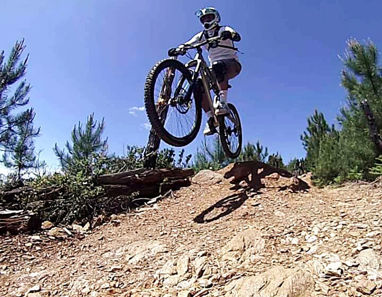 stunt, risk, extreme sports, only men, one man only, one person, skill, adventure, danger, motocross, headwear, low angle view, men, adult, adults only, people, sport, outdoors, motorcycle, mid-air, day, mountain bike, full length, sports clothing, clear sky, sky, tree, biker, young adult