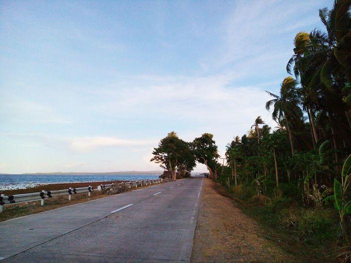 Sea. Road. Trees. Pick your destination. TheGreatOutdoors Thegreatoutdoors2015EyeemAwards