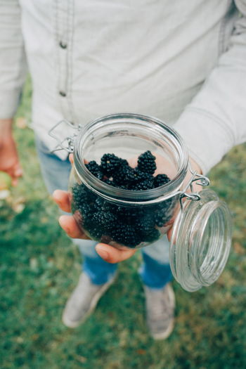 Low section of man holding blackberries in jar on field