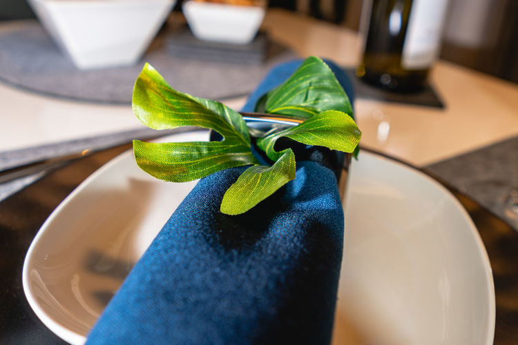 Table decoration Leaf Plant Part Green Color Indoors  Close-up Plant Focus On Foreground Human Body Part Nature High Angle View Real People Potted Plant Growth Selective Focus Home Interior Blue Human Hand Table Leaves Table Decoration