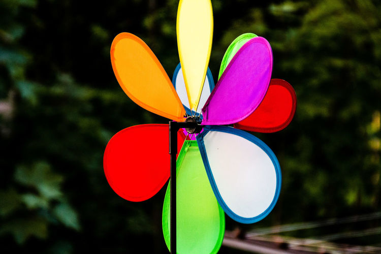 Close-up of colorful pinwheel toy