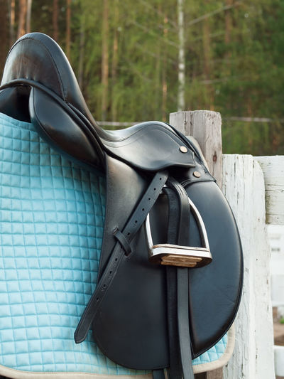 Close-up Day Dressage Horse Horse Life Horse Photography  Leather No People Outdoors Saddle Sport Stirrup