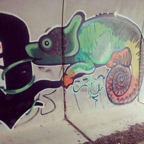Graffiti Rasines Cameleon Obradearte