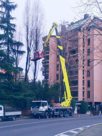 Architecture Bare Tree Building Building Exterior Cedar City City Life City Street Cone Crane Cutting Trees Danger Day Garden Hoist Maintenance Pavement Platform Prune Road Road Marking Road Sign Street Tree Wheel-mounted Crane