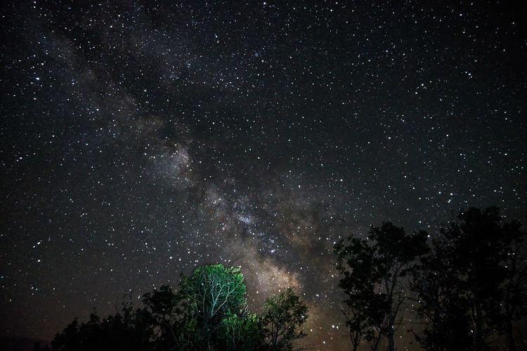 Low angle view of stars at dark sky
