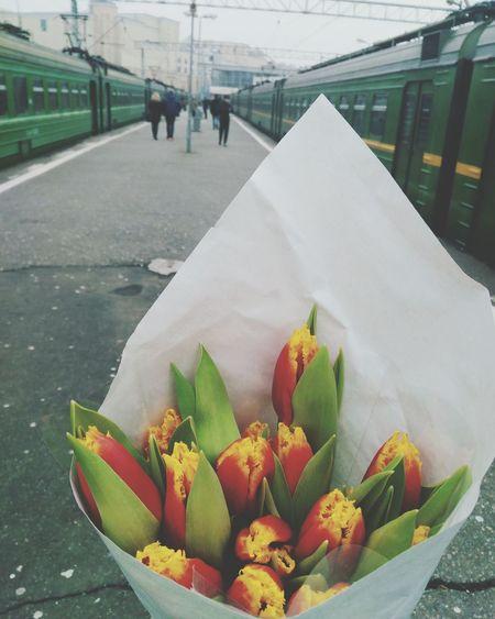 Flowers Lifestyles Present City Life