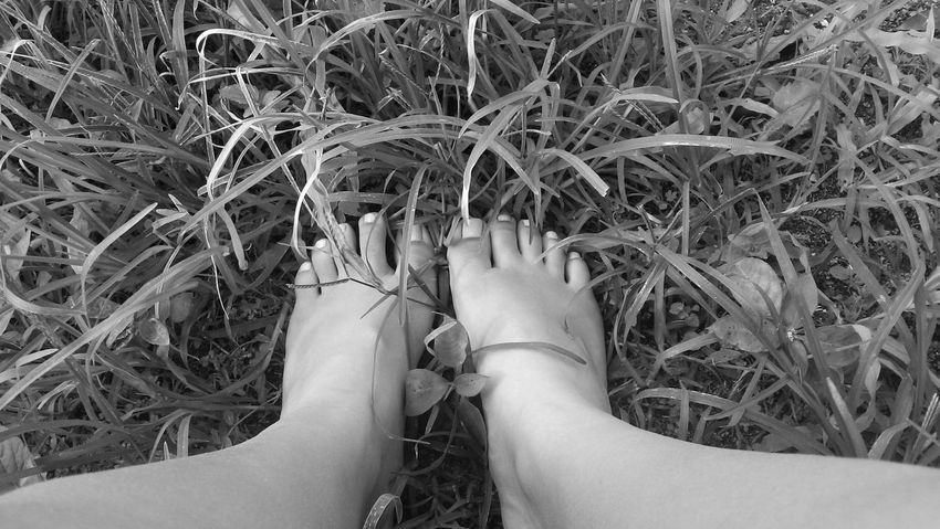 Shades Of Grey Grass Feeling Inspired My Feets