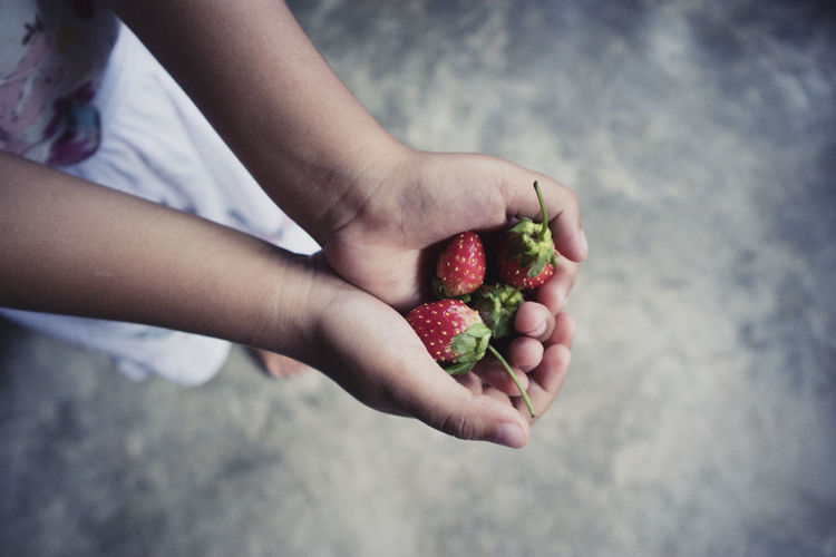 High angle view of hand holding strawberries