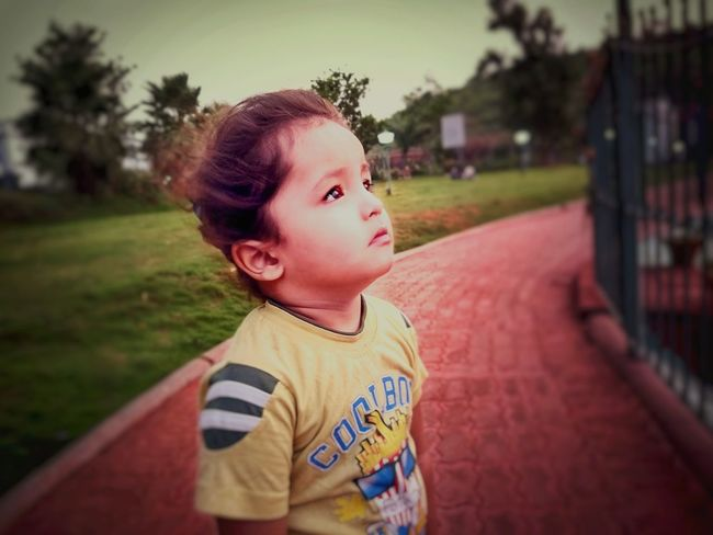 Childhood Child One Person Casual Clothing One Boy Only Boys Children Only Outdoors Headshot Real People Portrait Grass Close-up Indianboy Children Photography Childish Haircolor Hair Colours Of Life People Evening Playing Indiapictures India_clicks India