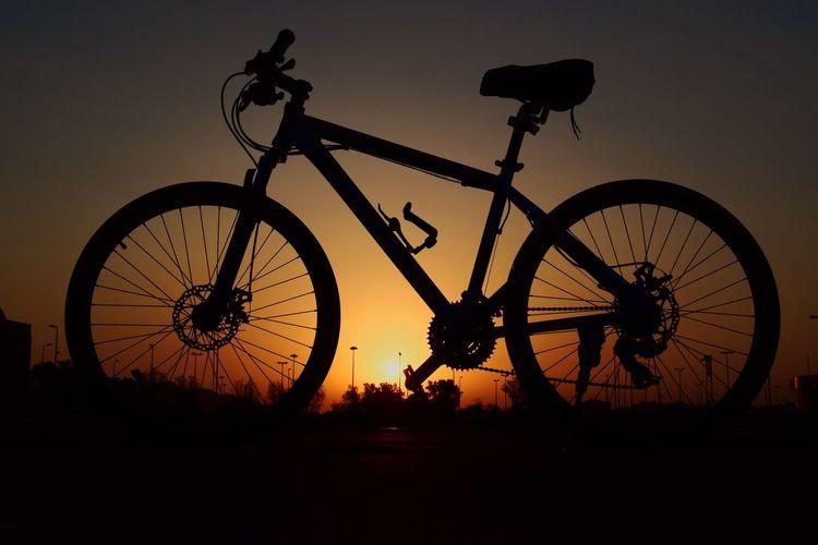 🚲🚲 Sunset