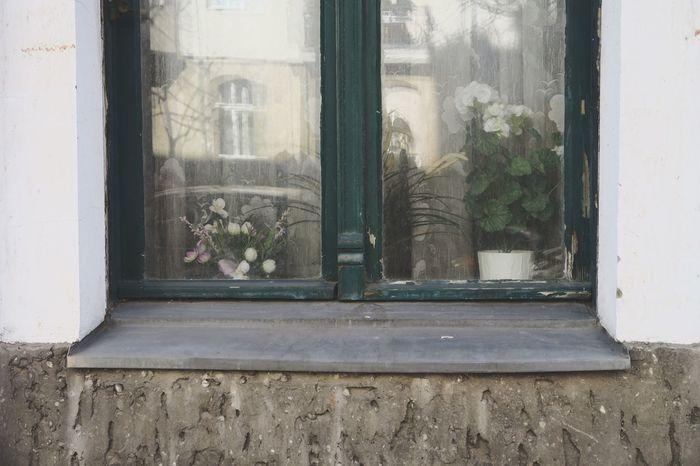 Berlin Window Tristesse City Sad