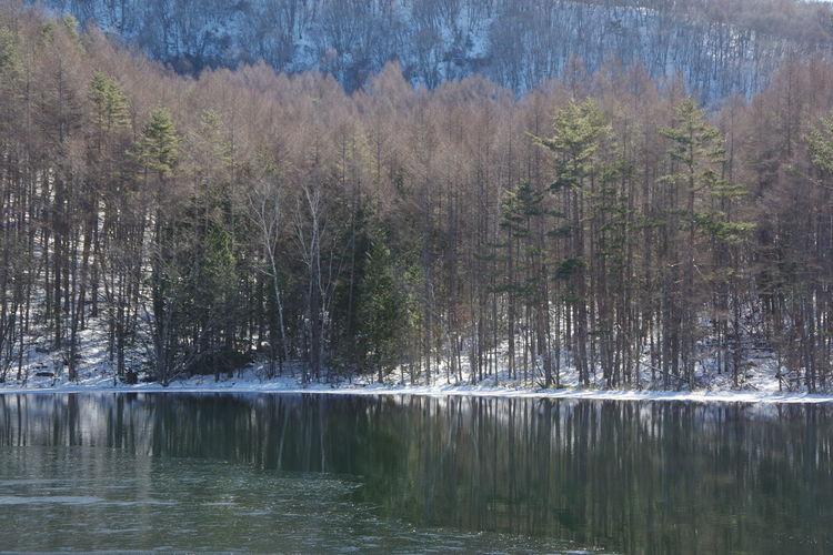 冬景色 御射鹿池 冬 長野県