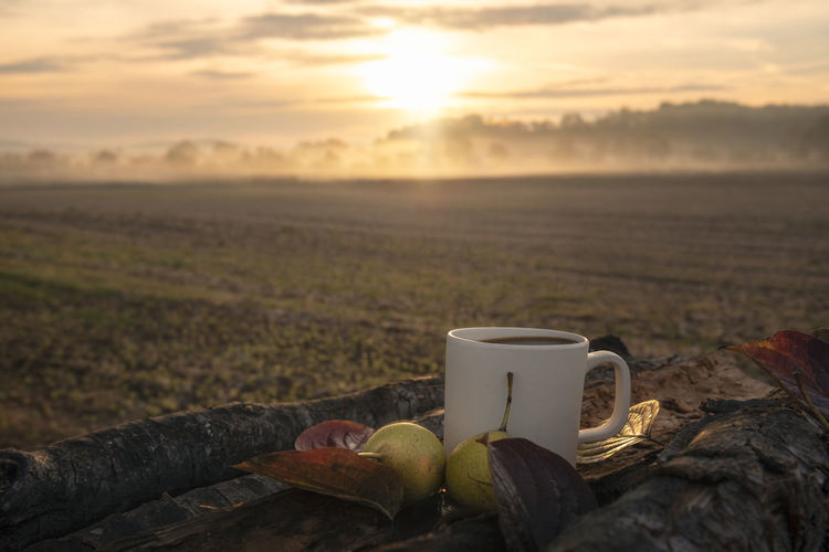 Coffee Cup And Fruit On Field Against Sky During Sunset
