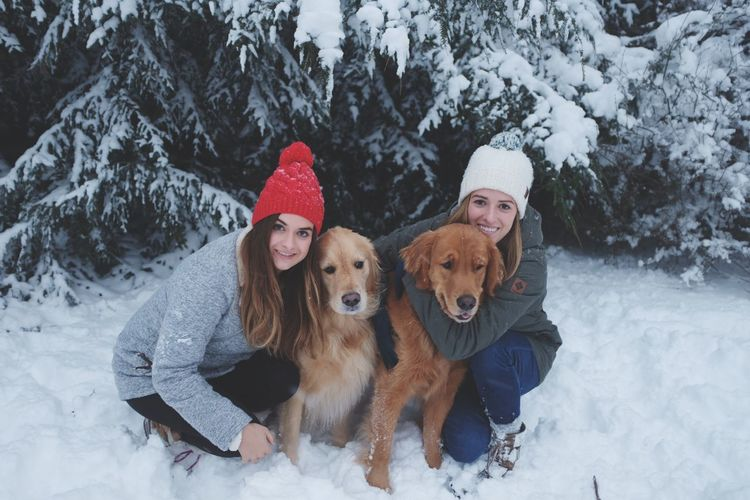 Portrait Of Female Friends With Golden Retrievers On Snow Covered Field
