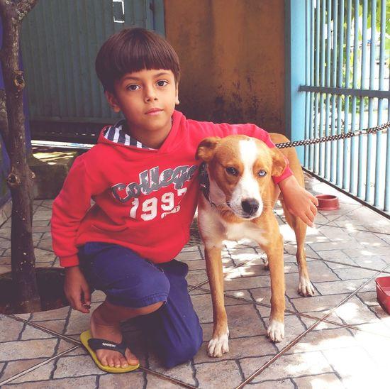 parceria Brasília Samambaia Dog Amizade Friends Quimera
