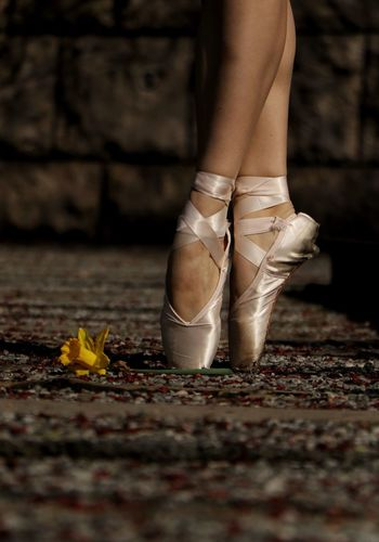 Low section of ballet dancer by yellow flower on footpath