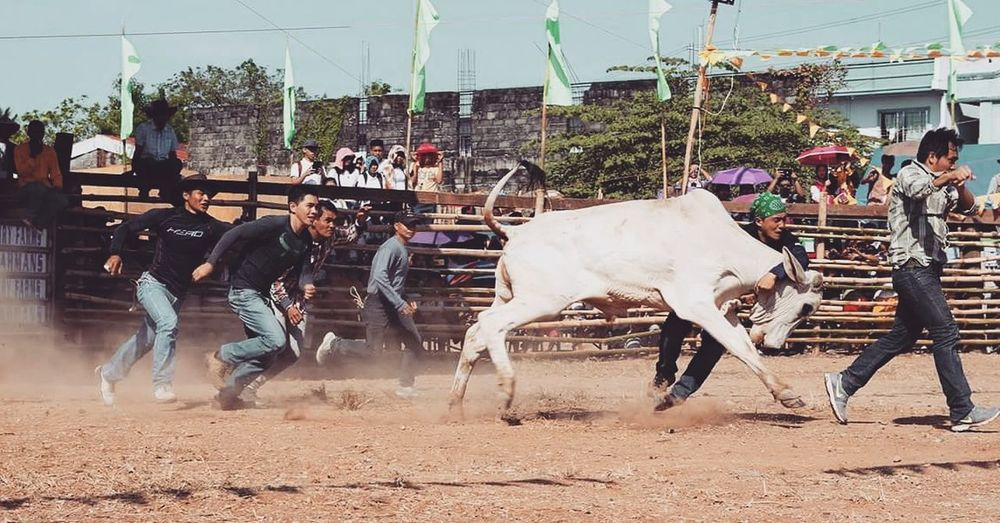 Tanay rodeo festival 2016 Travel Photography Funtasticphilippines
