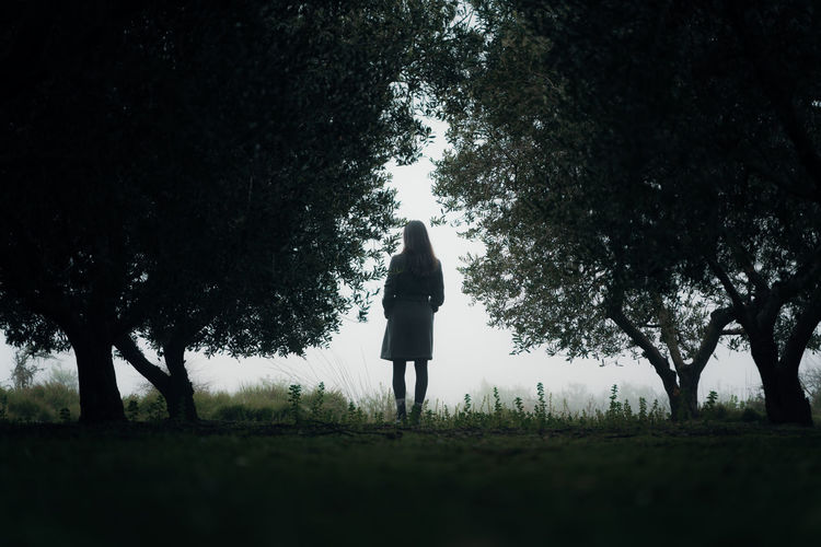 Rear view of woman standing on field in forest