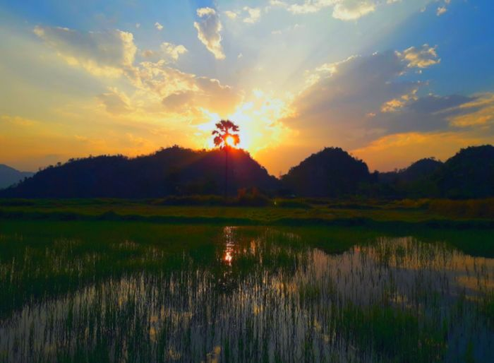 Sunset Tree Sky Reflection Water Cloud - Sky Sunlight Grass Mountain Nature Summer Tranquil Scene No People Outdoors Beauty In Nature Thailand🇹🇭 2018 Day EyeEmNewHere Tranquility Beauty❤
