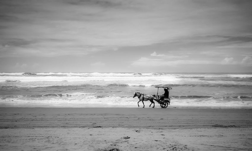 Silhouette Man Riding Horse Cart At Beach Against Sky