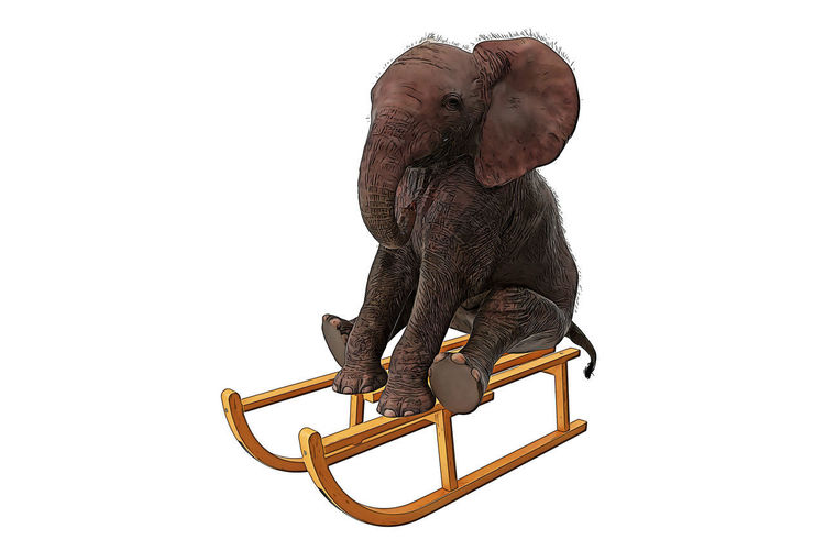 White Background Studio Shot Animal One Animal Animal Themes Mammal Indoors  Vertebrate No People Copy Space Cut Out Domestic Primate Monkey Pets Domestic Animals Black Color Sitting Metal Seat Elephant