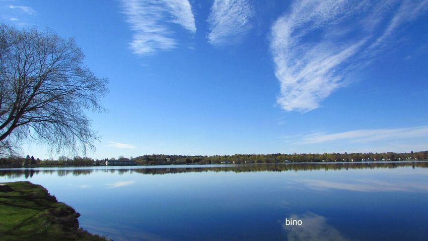 Early Morning Around The Lake Soo Very Blue!! Lake Like Glass Beauty In Nature Bare Branches Lake Cadillac Pure Michigan