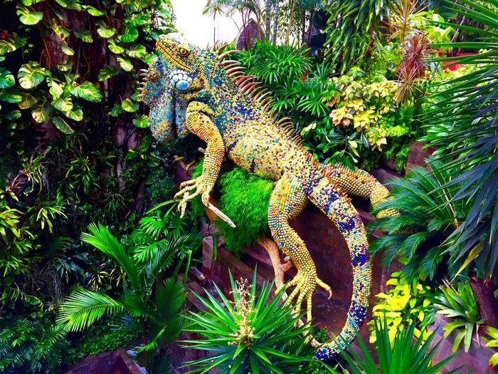 Iguana Sculpture Art Ecuador Jungle Tropical Reptile Lizard Latin America Latin American Art Guayaquil The Week On EyeEm
