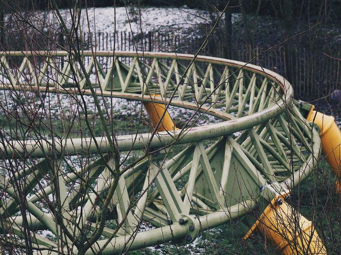 Freizeitpark Rollercoaster Tree Achterbahn Attractiepark Pretpark Ride Roller Coaster Theme Park Themepark Toverland
