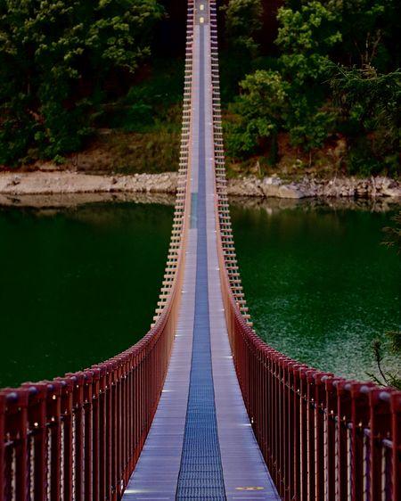 Korea's majang lake suspension bridge.