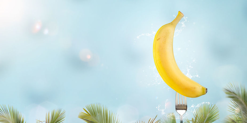 Low angle view of banana against sky