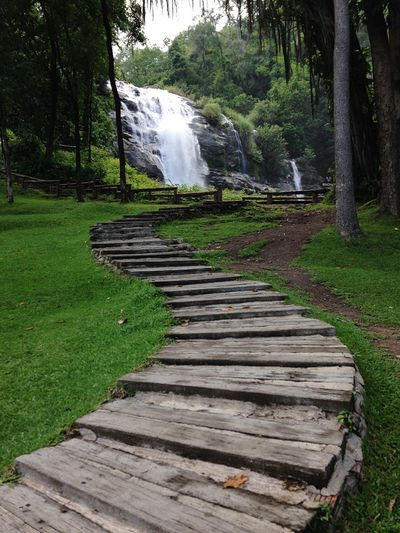 Pathway leading waterfall in forest