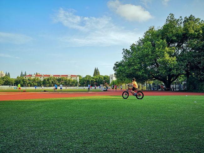 上师范操场 Sports Team Competition Teamwork Sports Clothing Sport Tree Playing Field Competitive Sport Exercising Playing