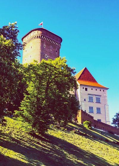 Kraków, Poland Zamek Królewski Na Wawelu Wawel Castle Wawel  Architecture History Clear Sky Travel Destinations No People Castle Outdoors Poland Fort Building Exterior Day