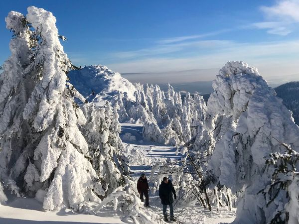 Snow Shoeing Snow Winter Cold Temperature Beauty In Nature Real People Leisure Activity Mountain Sky Snowcapped Mountain
