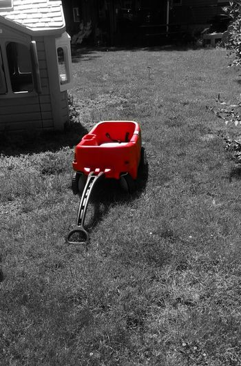 Little Red Wagon Wagon  Red Wagon Red Black And White Black And White With A Splash Of Color Splash Of Color Kids Toys Toy Toys Childhood Memories Childhood Child Childsplay Yard Outside Outdoors Pull Toy Carry Ride Ride-In Radio Flyer Everyday Life Wagon Ride Fun