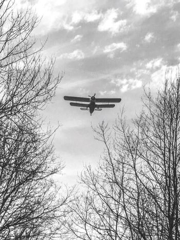 Plane Sky Clouds And Sky Clouds Aircraft Blackandwhite Blavk And White