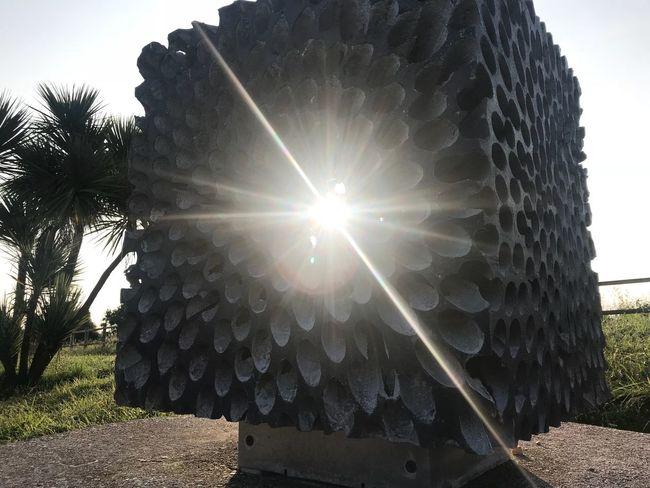 Sculpture Sunlight Plant Tree Lens Flare Sky Nature Sun Sunbeam Tranquility Sunny Bright Day