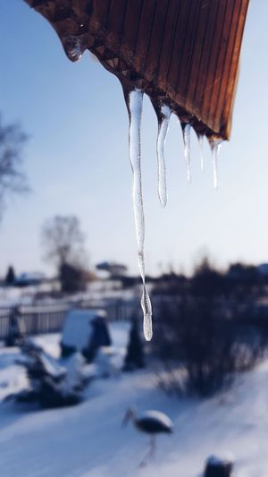 Water Drop Focus On Foreground Cold Temperature Winter Close-up Nature Frozen Outdoors Icicle Sky Motion Ice Beauty In Nature Day No People Snow Country