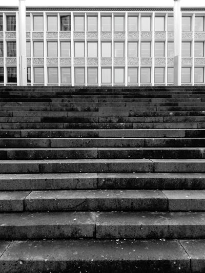 steps staircase and building of the public administration Building Architecture Public Administration Architecture Close-up Built Structure Building Exterior Stairway Steps And Staircases Fire Escape Emergency Exit Stairs Escalator Steps Staircase Emergencies And Disasters