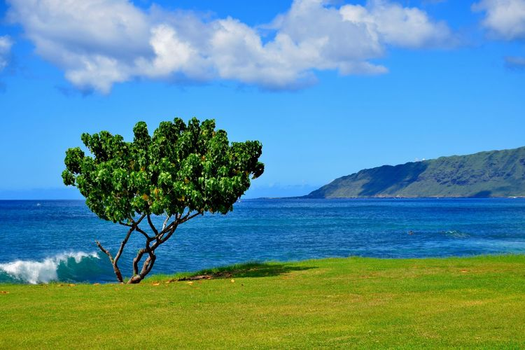 A western side beach Beach Coastline Landscape Landscapes With WhiteWall Mountain Sand Sea Sky Water