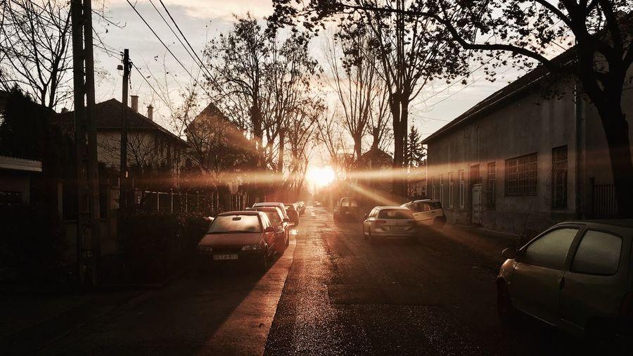 Sunset Hungary I <3 You Zugló Street Sunlight Sun Papoy✌🏽