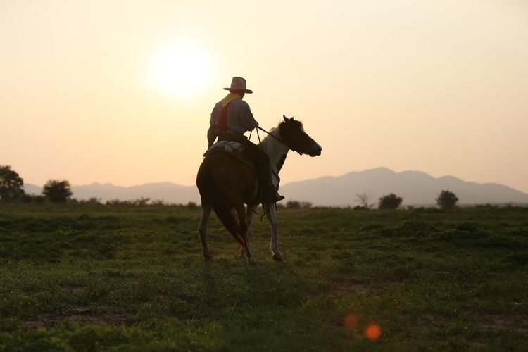 Mammal Domestic Animals Land Field Livestock Domestic Animal Themes Animal Horse Sunset Pets One Person Activity One Animal Animal Wildlife Sky Scenics - Nature Vertebrate Horseback Riding Riding Herbivorous Cowboy